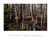 Artists in the forest