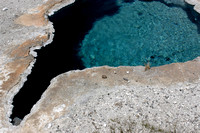 A series of photographs of the Yellowstone thermal springs.