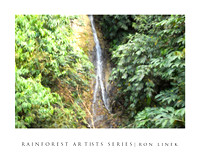 Rainforest Artists' series-photos of the reainforst as if painted by gamous artists.