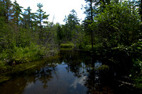 Panoramic photograph made on a trip to Michigan.
