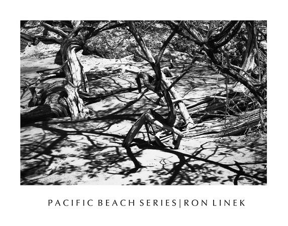 Photographs of Pacific beach, Costa Rica