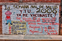 Inoculaton Advertisement, San Martin Tilcajete, Mexico.